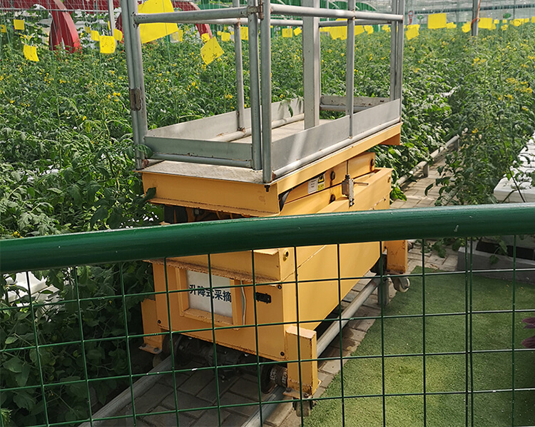 Orchard Picking Lift Platform